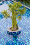 Luxury resort with beautiful pool and fantastic ocean. View at day Royalty Free Stock Images