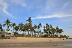 Luxury resort with coconut tree Royalty Free Stock Image