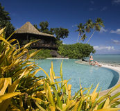 Luxury resort - Cook Islands - South Pacific. Girl in a bikini on the edge of an infinity pool at a luxury resort on the tropical island of Aitutaki in The Cook royalty free stock photos