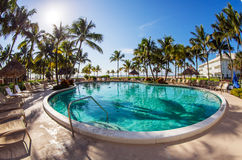 Luxury resort pool. With palms and blue sky Stock Photo