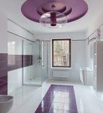 Luxury restroom interior Stock Photo