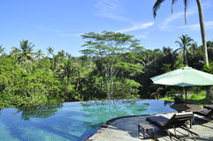 Luxury retreat spa swimming pool in the middle of the tropical forrest royalty free stock photos