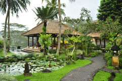 Luxury retreat spa villa in the rain forrest stock images