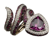 Luxury ring Stock Photography