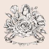 Luxury rose Stock Photography