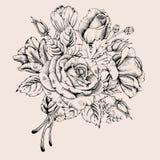 Luxury rose Royalty Free Stock Image