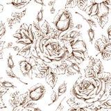 Luxury rose Royalty Free Stock Photo