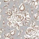 Luxury rose Royalty Free Stock Images