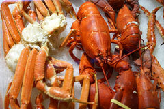 Luxury seafood - lobster & king crab Stock Image