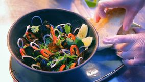 Delicious mussels dish presentation stock footage