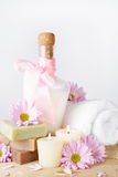 Luxury Shampoo in Pink Royalty Free Stock Photography