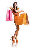 Luxury shopper. Stock Images