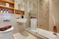 Luxury shower room. And wc interior with high gloss marble and tile decor royalty free stock photos