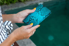 Luxury snakeskin python blank passport cover in woman hands. Bali, swimming pool. Luxury snakeskin python blank passport cover in woman hands. Bali stock photography