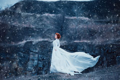 Luxury snow queen. Stands on top of the snow-covered mountains and looks into the distance,fashionable toning,creative computer colorsn Stock Images