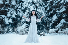 Luxury snow queen. In a white dress standing on a snowy meadow among the snowy Christmas trees , fashionable toning , Creative Colors Stock Photos