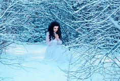 Luxury snow queen. In a white vintage dress standing on a snowy meadow   , fashionable toning , Creative Colors Stock Images