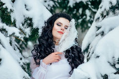 Luxury snow queen Royalty Free Stock Photo