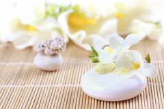 Luxury soap Stock Images