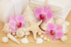 Luxury Spa Royalty Free Stock Photo