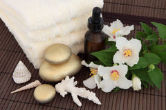Luxury Spa Behandeling Stock Foto