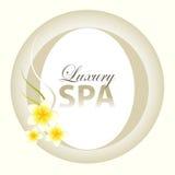 Luxury Spa Design. Luxury spa background design Royalty Free Stock Photo