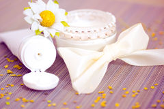 Luxury spa product: moisturising cream Royalty Free Stock Photography