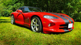 Luxury Sports Cars. Red Dodge Viper car, 2-door roadster. Luxury sports cars Royalty Free Stock Image