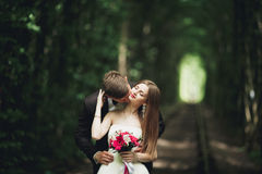 Luxury stylish young bride and groom on the background spring sunny green forest Stock Photo