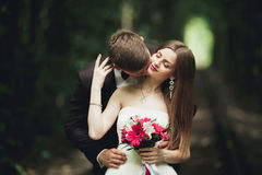 Luxury stylish young bride and groom on the background spring sunny green forest Royalty Free Stock Photography