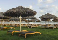 Luxury sunbeds on grass near Mediterranean sea Royalty Free Stock Photos
