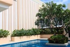Luxury swimming pool. stock photo