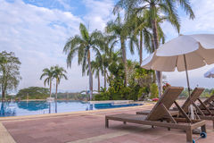 Luxury swimming pool with plam tree in morning Royalty Free Stock Photography