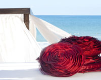 Luxury touch in the beach Stock Photography
