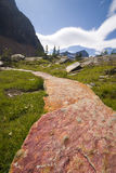 Luxury trail in backcountry Stock Image