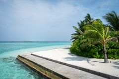 Beautiful beach with palm trees, white sand and blue sky. Maldives royalty free stock images