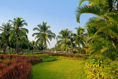 Luxury tropical resort Stock Images