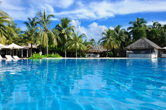 Luxury tropical swimming pool. Luxury swimming pool in the tropical hotel Stock Image