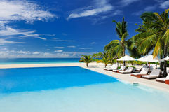Luxury tropical swimming pool. Luxury swimming pool in the tropical hotel Royalty Free Stock Image