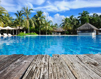 Luxury tropical swimming pool Stock Photos
