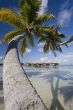 Luxury Vacation - French Polynesia - South Pacific royalty free stock images