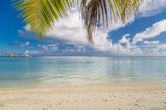 Luxury vacation. Summer beach in Maldives island, palm leaf and water villas. Amazing scenery, sea and white sand under blue sky royalty free stock photos