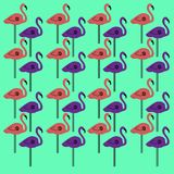 Luxury design vint. Flamingos Vint. GREEN Stock Photos