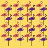 Luxury design Flamingos colorful on gold Royalty Free Stock Photo