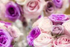 Luxury wedding bouquet of pink and purple roses. Luxury wedding bouquet of purple and pink roses at a high end exotic wedding and flower show in Dubai royalty free stock photo