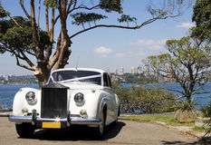 Luxury Wedding Car. Luxury White Wedding Automobile At Water Front Car Part stock photography