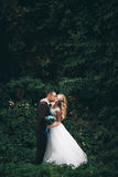 Luxury wedding couple hugging and kissing on the background gorgeous plants and cave near ancient castle Stock Photography