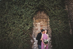 Luxury wedding couple hugging and kissing on the background gorgeous plants, cave near ancient castle Stock Photos