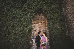 Luxury wedding couple hugging and kissing on the background gorgeous plants, cave near ancient castle Stock Photo