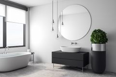 Luxury white bathroom interior. With appliances and decorative pot tree. Design and real estate concept. 3D Rendering royalty free illustration